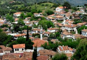 What to do in selcuk sirince